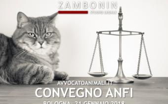 Convegno-Anfi
